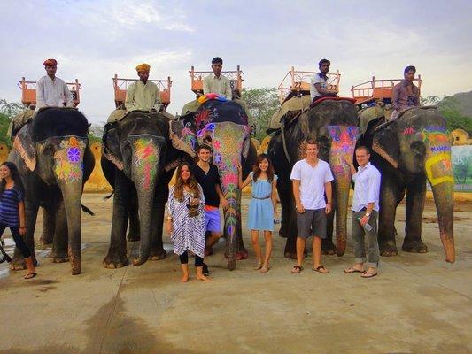 Elefantastic - The Best Elephant Wildlife Sanctuary in India
