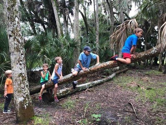 Myakka River State Park Youth Camp