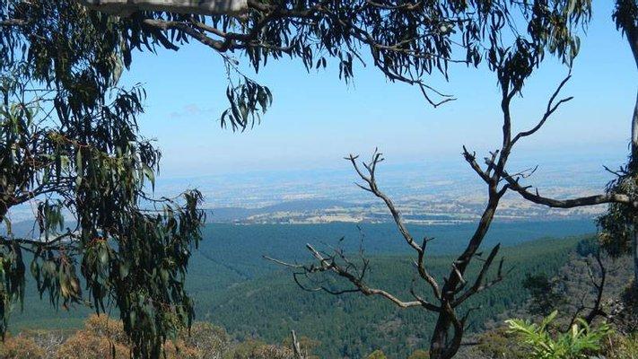 Mount Canobolas State Recreation Area