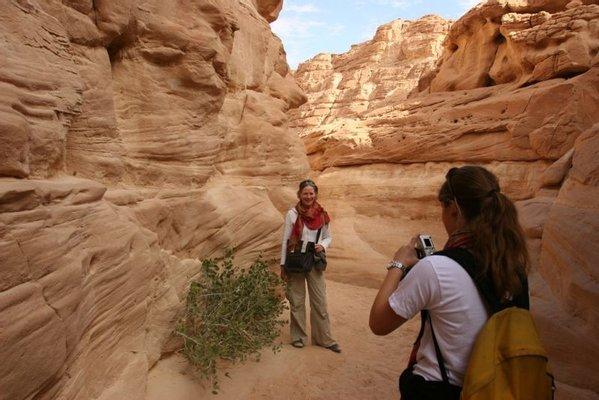 Sinai Safari Adventures