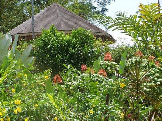 Pura Vida Gardens And Waterfall