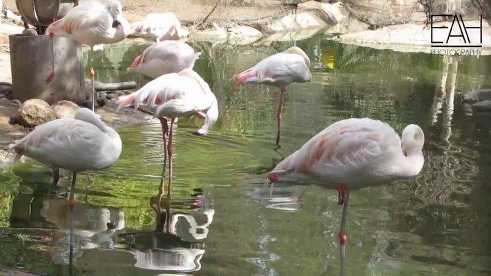 Agadir Birds Valley