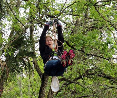 Treetop Trek Aerial Adventures