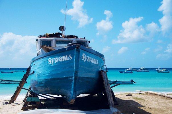 Barbados (Bodie's) School of Surf