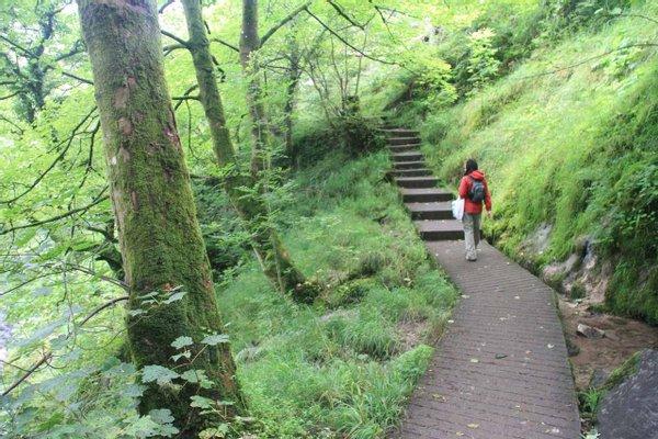 Ingleton Waterfalls Trail