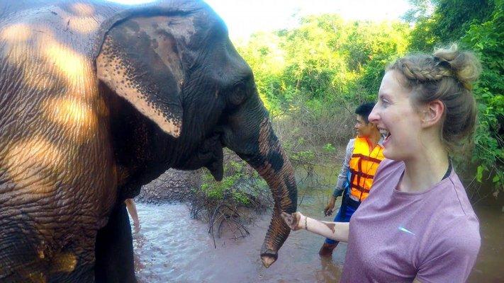 Vang Vieng Elephant Sanctuary Office