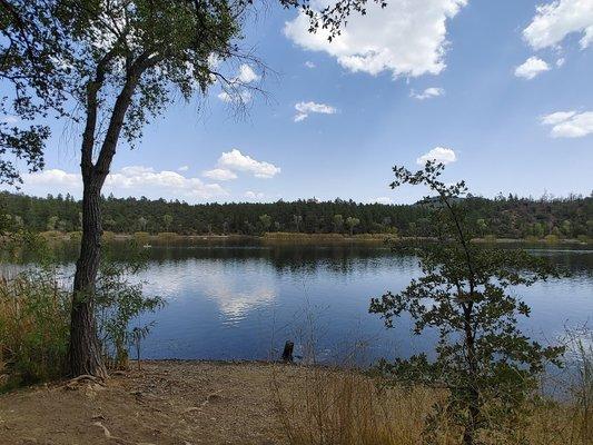 Lynx Lake - North Shore Picnic Site