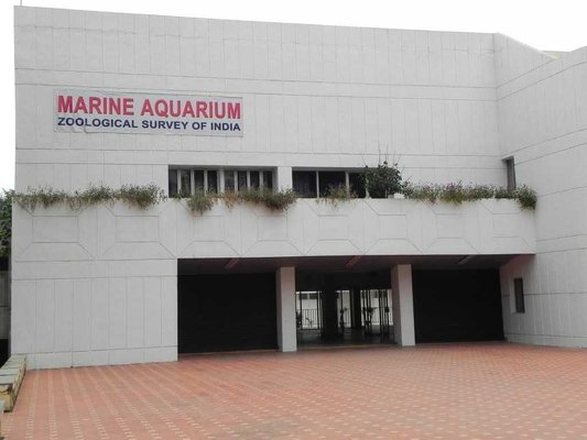 Marine Aquarium & Regional Centre