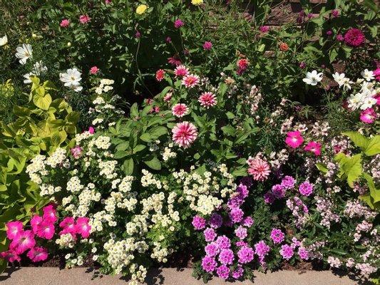 Denver Botanic Gardens: Helen Fowler Library