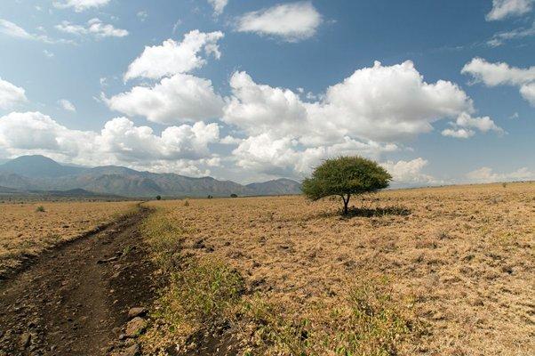 Národní park Nechisar