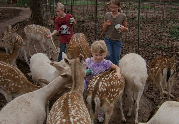 Grand Canyon Deer Farm LLC