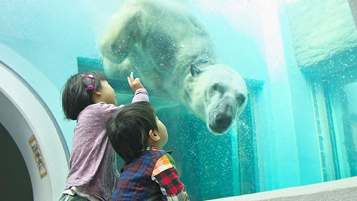 Shizuoka Municipal Nihondaira Zoo