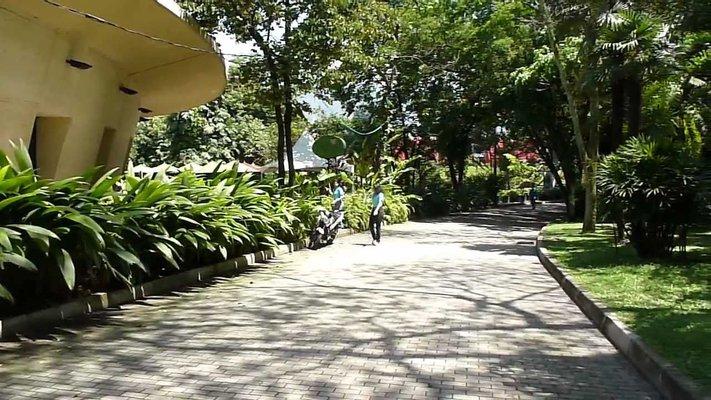 Viveros Jardin Botanico de Medellin