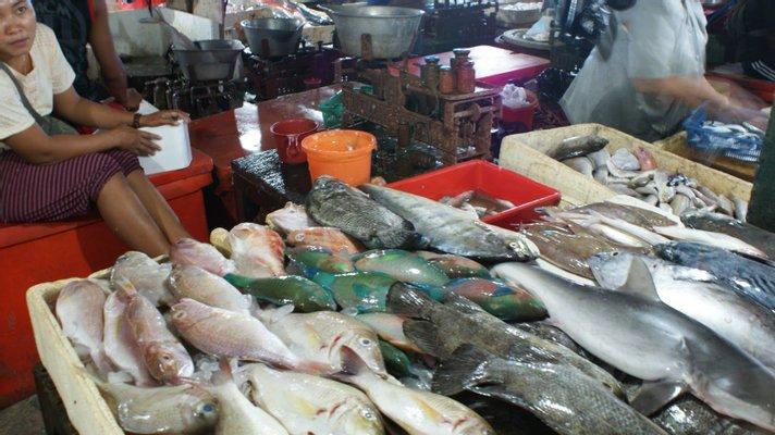 Pasar Ikan Kedonganan