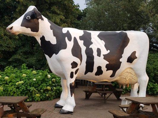 Jilbert Dairy Inc