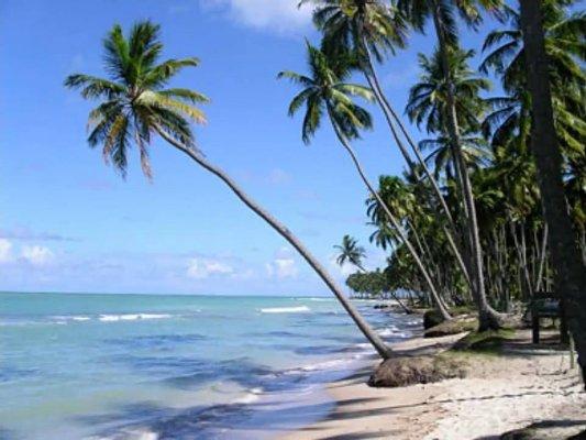 Praia de Tamandare